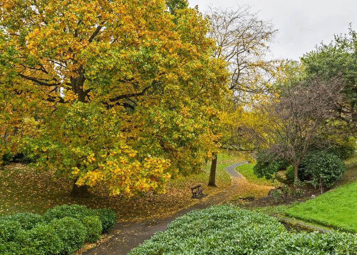 Port Sunlight Park
